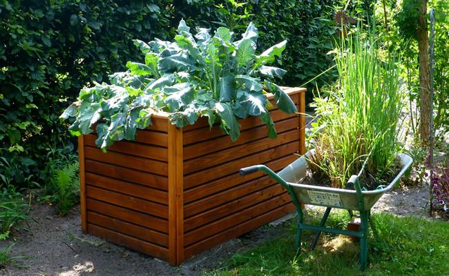 Installer Un Carre Potager Pour Un Mini Jardin En Ville